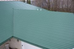 Beyers-Roof-2