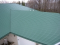 Green Seamless Roof
